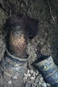 Sewer Backup Toronto
